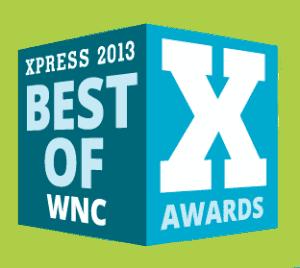Mtn-X-Best-of-2013-logo
