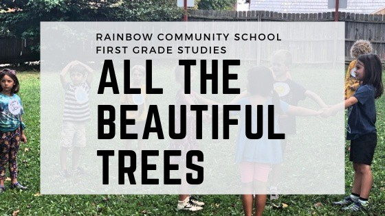All The Beautiful Trees